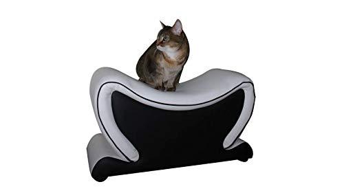mobilier nitro Puf de diseño para Gatos y Perros New York: Amazon ...