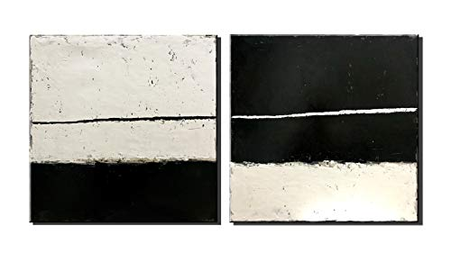 Diathou 2 Pieces of Abstract Wall Art 20x20in x2 100% Hand-Painted Black and White Abstract Paintings Living Room Bedroom Corridor Office Modern Home Decoration