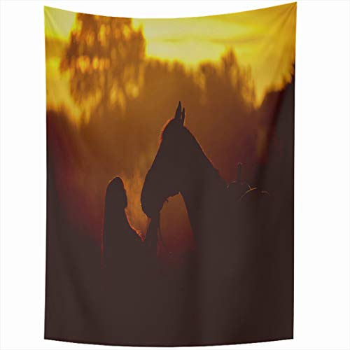(Ahawoso Tapestry 60 x 90 Inches Warm Orange Girl Horse On Dawn Wildlife Farm Back Sunset Club Friendship Design Wall Hanging Home Decor Tapestries for Living Room Bedroom Dorm)