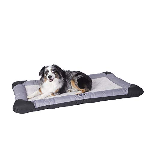 Sealy Quilted Memory Foam Heavy Duty Crate Pad Gray/Black, Large 28' x 40', Large (28' x 40')