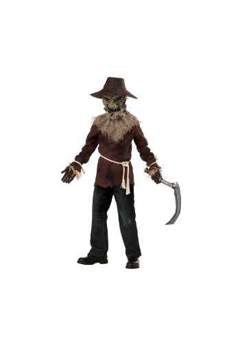 Children's Scarecrow Costumes (California Costumes Toys Wicked Scarecrow, Large)