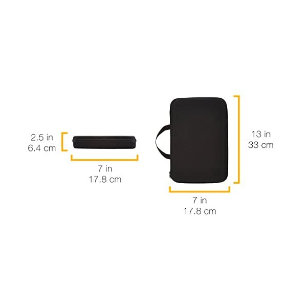 Amazon Basics - Custodia per trasporto GoPro, misura Large 7 spesavip