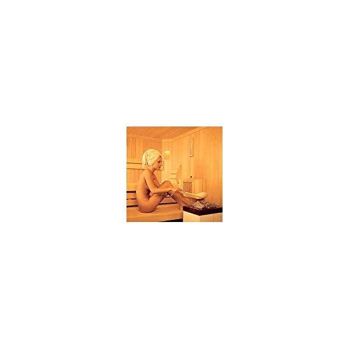 Desineo Po/êle /à Sauna 3 KW avec Commandes int/égr/ées