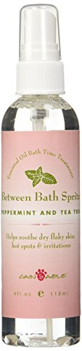 Cain & Able Between Baths Spritz, Peppermint, 4 Ounces (Peppermint Able Shampoo)