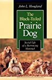 The Black-Tailed Prairie Dog : Social Life of a Burrowing Mammal, John L. Hoogland, 0226351173