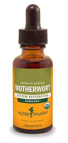 Herb Pharm Certified Organic Motherwort Liquid Extract for Endocrine System Support - 1 -
