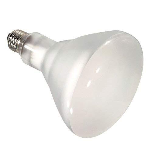 Satco 65BR40/FL/HAL/130V Halogen Reflector Halogen, 65W E26 BR40, Frosted Bulb [Pack of 12]