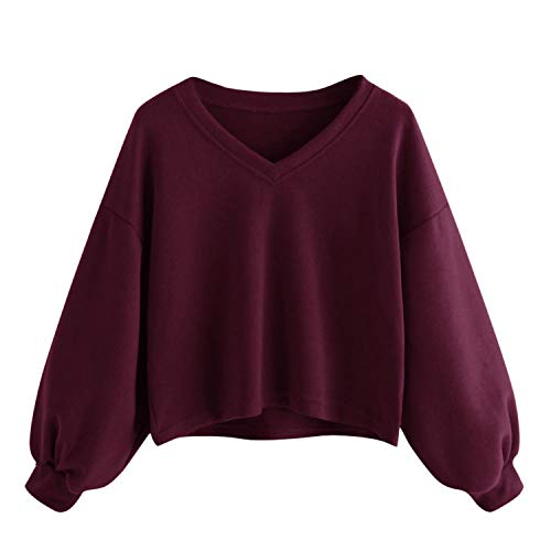 Women Long Sleeve Sweater V Neck Sweatshirt Pullover Shirts Tops Blouse,Purple,XL,United States (Maxi Dress For Wedding In Pakistan 2016)