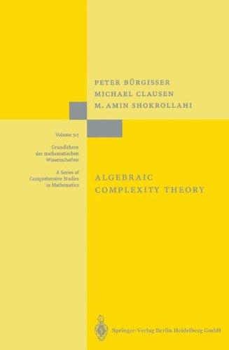 Algebraic Complexity Theory (Grundlehren der mathematischen Wissenschaften) by Brand: Springer