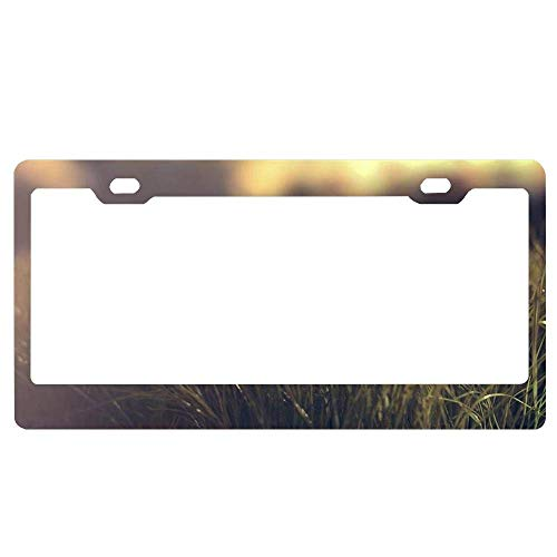 YEX Abstract Nature Grass Depth Field Background Pictures License Plate Frame Car License Plate Covers Auto Tag Holder 6