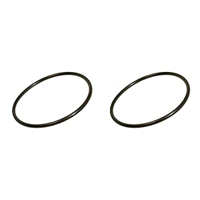 Pentair Cap O-Ring Replacements Rainbow 300/320 Pool Chlorinator Lid (2 Pack): Garden & Outdoor