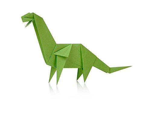 Amazon Npw W7244 Dinosaur Origami Kit