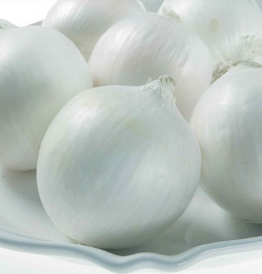 David's Garden Seeds Onion White Castle D3085 (White) 500 Hybrid Seeds