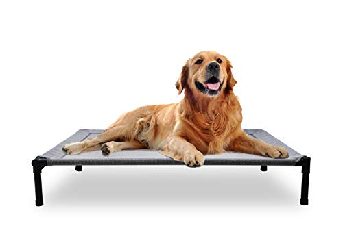 Mora Pets Dog Cot Outdoor Dog Bed Raised Dog Bed Elevated Pet Beds