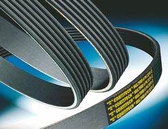 Contitech V-Ribbed Belt 7PK1950