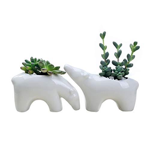 OYSIR Valentine's Day Decorations Animal Plant Pot,Ceramic Decorative Carton Corgi Succulent Planter Pot Window Boxes Desktop Flowerpot,2 pcs,no Plants (Polar Bear) -