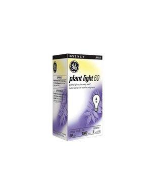 GE 41624 6 Plant 60 Watt 6 Pack