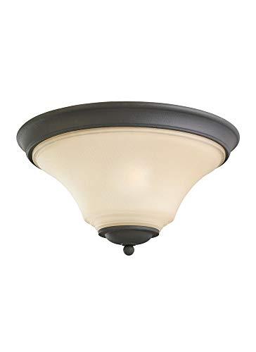 (Sea Gull Lighting 75375-839 2-Light Flush Mount Fixture, Cafe Tint Glass Shade and Blacksmith)