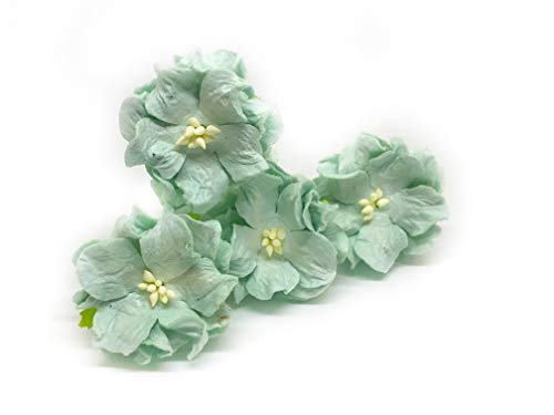 "Savvi Jewels 1.5"" Mint Green Mulberry Paper Flowers with Wire Stems Gardenia Flowers Mini Paper Flowers Wedding Decoration Craft Scrapbooking Flowers Bouquet 12 Pieces from Savvi Jewels"