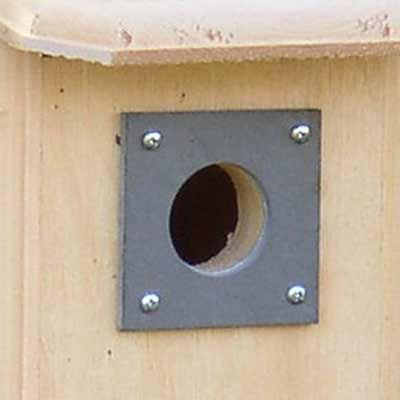 Coveside Slate Hole Protector, 1.5'' dia. hole