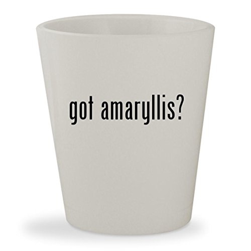 got amaryllis? - White Ceramic 1.5oz Shot Glass Amaryllis Apple Pots