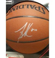 Signed Bibby, Mike Spalding Indoor/Outdoor Basketball autographed Powers Collectibles