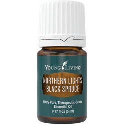 Young Living Essential Oils ~ Northern Lights Black Spruce 5ml 100% Pure Theraputic Grade