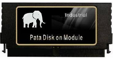 Gigaram 4GB 44-pin IDE Disk On Module Vertical PATA DOM Sale !!!