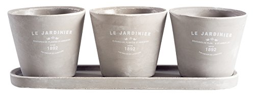 Torre & Tagus 902613 Jardinier Set of 3 Round Planters on Tray, Natural, 3 Piece