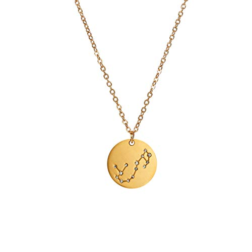 14K Gold Plated Astrology Horoscope Constellation Zodiac Coin Necklace Couples (Gold Plated, Scorpio)