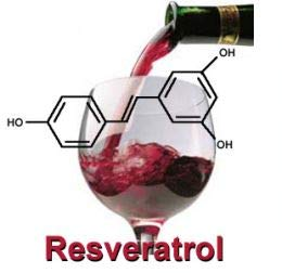 VINTAGE RESVERATROL 100% - Naturally Occurring Resveratrol from French Red Wine Grapes ()