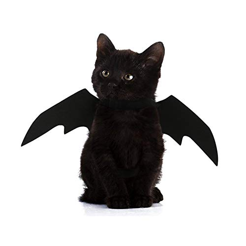SuBoZhuLiuJ New Halloween Pet Costumes for Dog Puppy Cat with Black Cool Bat Wing Make Up Costumes Clothes - Black ()