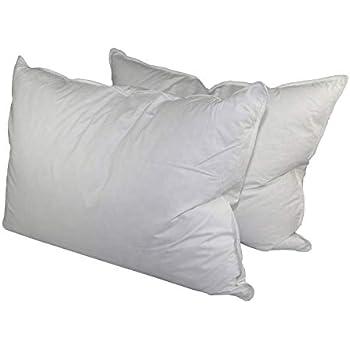 envirosleep dream surrender queen pillow set 2 pillows home kitchen. Black Bedroom Furniture Sets. Home Design Ideas
