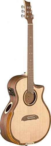 (Riversong Guitars 6 String TRAD 2 P GA Tradition Two Series Grand Auditorium Acoustic-Electric Guitar with Deluxe Case Included)