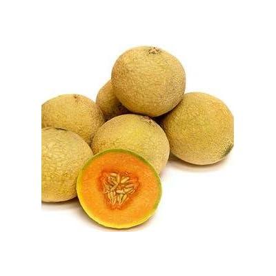 Cantaloupe And Muskmelon Sugar Cube 100 seeds : Garden & Outdoor