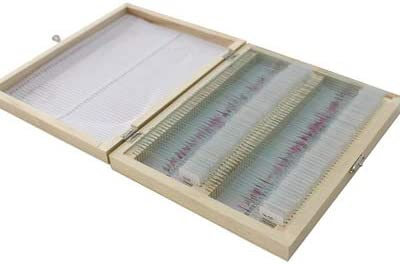 Directory As Shown Tehok 100 Pcs Prepared Microscope Slide Set Human Tissue Section Specimen Set Typical Teaching Tools for Medical and Biological Anatomy