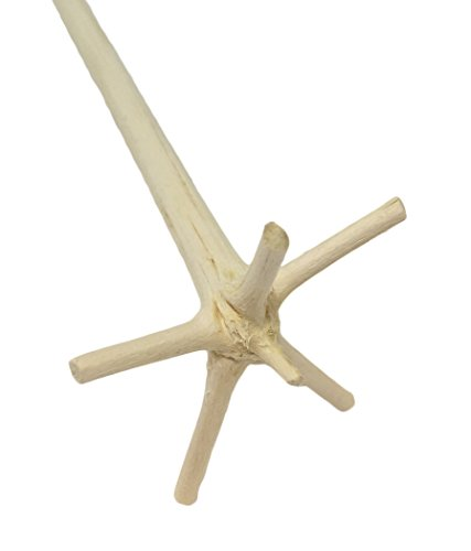 Traditional Cocktail Swizzle Stick aka le Bois Lélé from Martinique