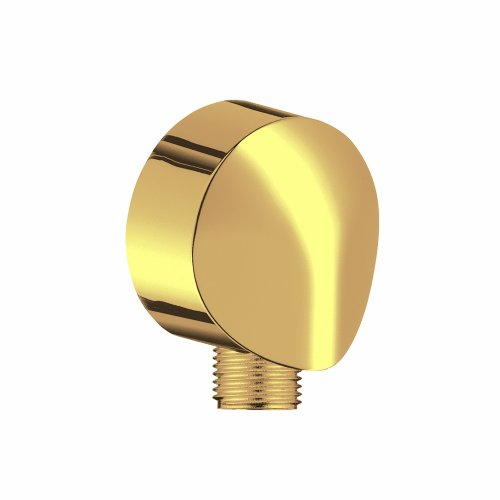 Hansgrohe 27458933 Wall Outlet with Check Valve, Polished Brass