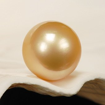 getgemstones 12 mm Amazing Golden South Sea Pearl Gemstone穴なしAAA品質12.4カラット   B077686XW3