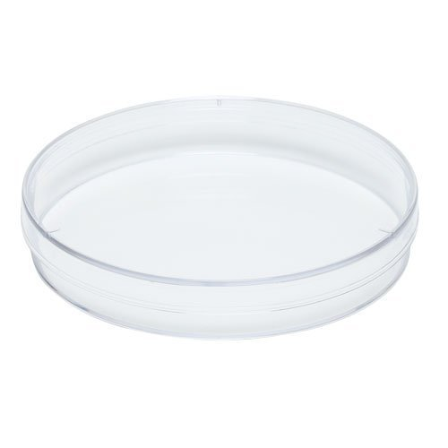 Fisher Scientific FB0875713 Polystyrene Beveled product image