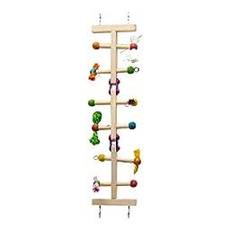 Kaytee Forage-N-Play Ladder, Small Bird Cage