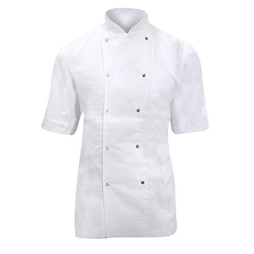 Dennys Ladies/Womens Short Sleeve Chefs Jacket / Chefswear (XL) (Economy Chef Pant)