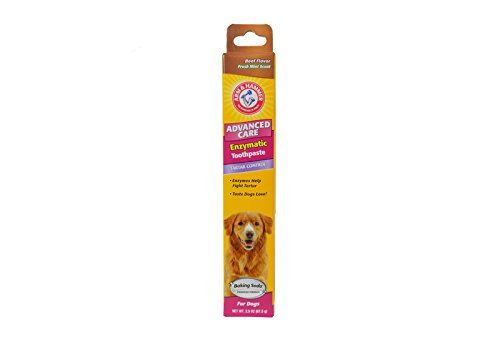 Arm & Hammer Advanced Care Enzymatic Toothpaste for Dogs, Beef Flavor