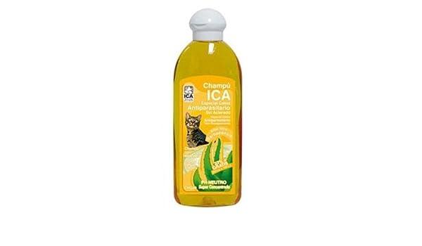 ICA CHG20 Champú Antiparasitario con Aloe Vera para Gatos ...
