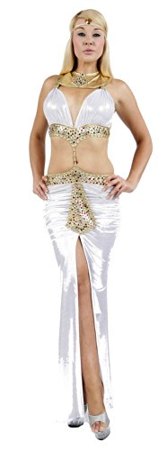 Sexy Cleopatra Dress (Nom de Plume, Inc Sexy Stretch Shimmer Cleopatra Gown Set Medium White/Gold)