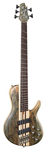 (Cort Artisan Series A5PLUS 5-String Multi Scale Bass, Open Pore Trans Grey Finish)