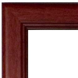 USC Diploma Frame with Artwork in Classic Mahogany Frame