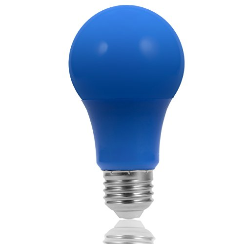 Colored Bulbs For Landscape Lighting in Florida - 4