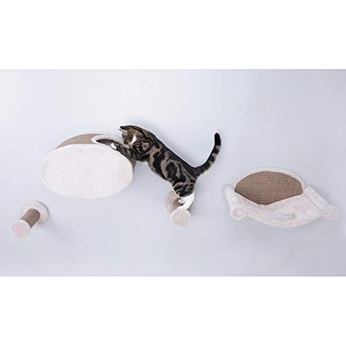 Trixie Pet Products Wall Mount Cat Playground and Condo Review