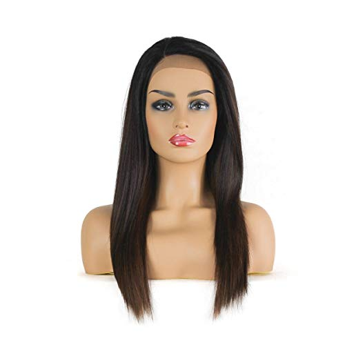 Merrylight Straight Synthetic Lace Front Wigs L Part Heat Resistance Tangle Free Soft Lace Wigs 20'' Inches (Medium Dark Brown Frosted With Light Auburn-OP430)